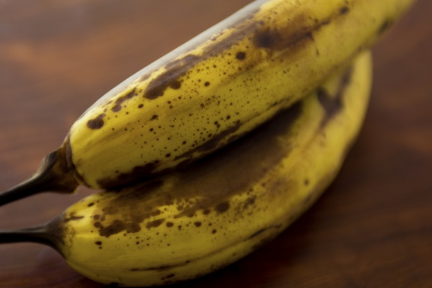 edison-invention-fruit