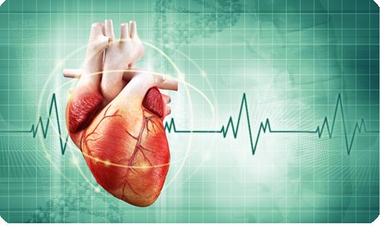 آیا ضربان قلب مردان و زنان برابر آست؟
