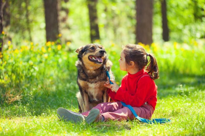 سلامت روانی کودک در رابطه با حیوانات خانگی