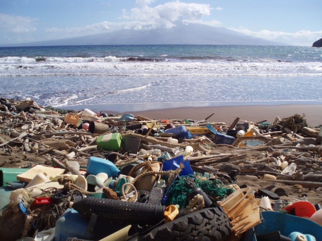 even-though-martini-and-goldstein-think-the-ocean-cleanup-me
