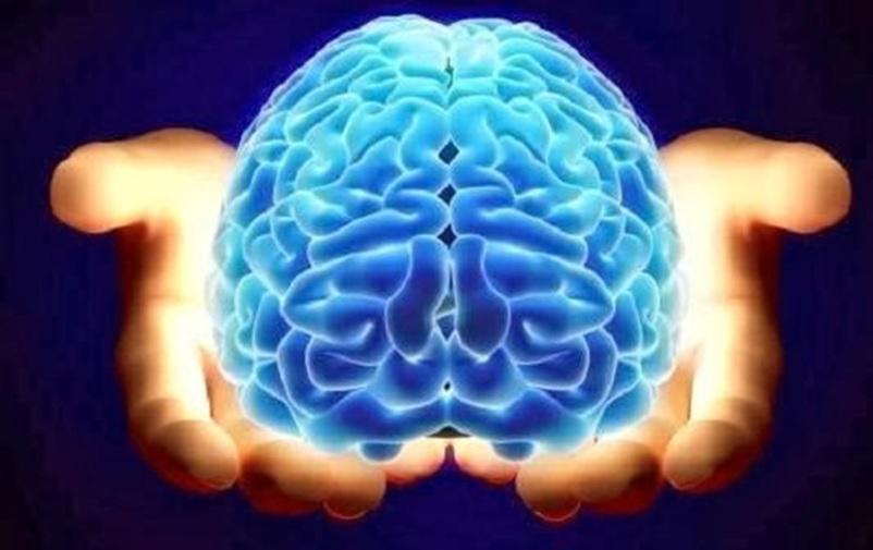 ده حقیقت جالب درباره مغز انسان