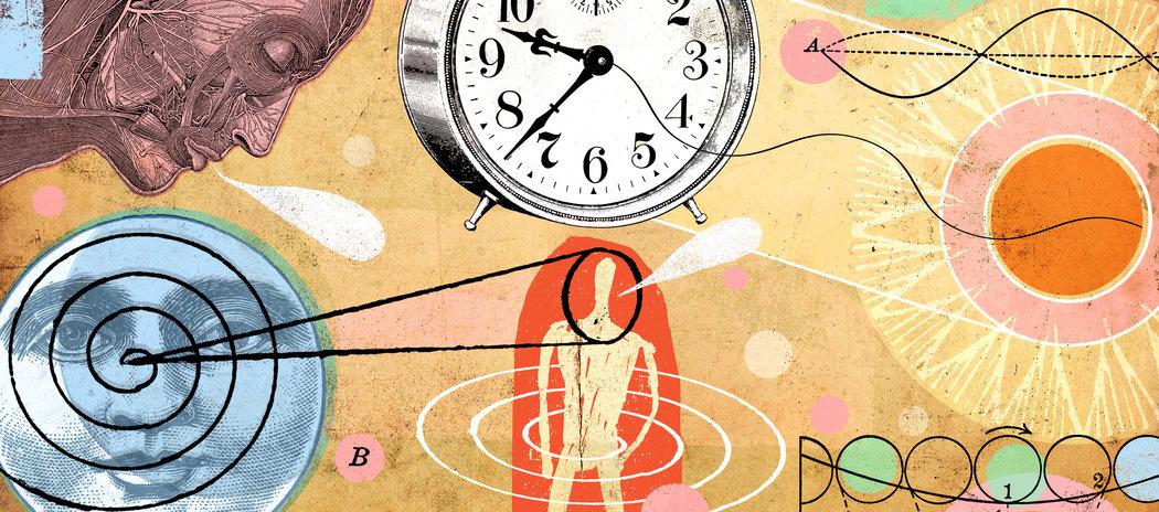 تاثیر محرک های ساعت درون بدن بر رفتارهای انسان