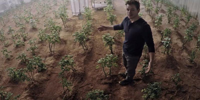 کاشت سیب زمینی روی مریخ