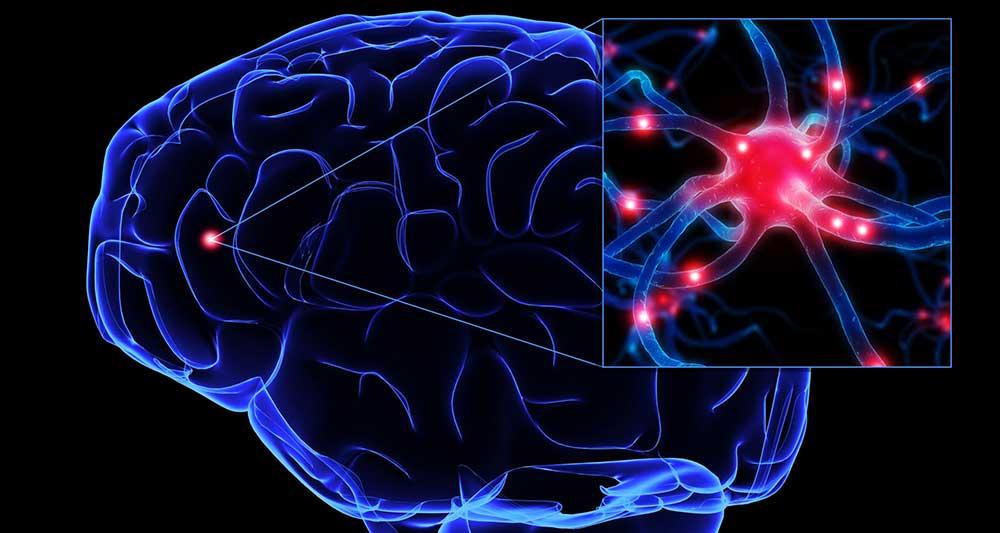 مغز انسان چگونه ما را از خواب بیدار می کند؟