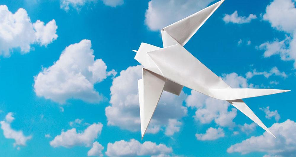 sn--origami