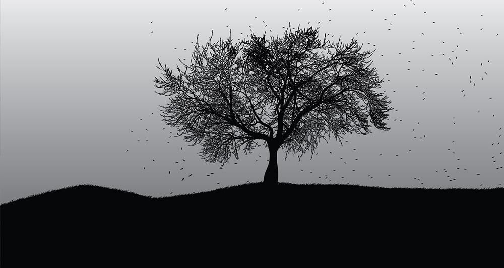 در مورد خطرناک ترین درخت دنیا چه می دانید؟