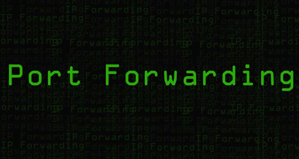12541port forwarding