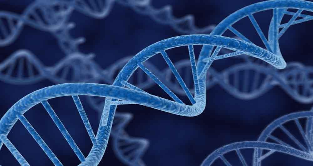 درمان بیماری های نادر چشم با قیچی DNA