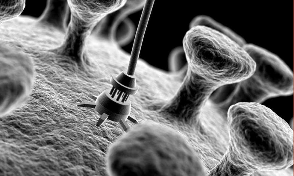 magnetoelectric-nanoparticles-inside-brain
