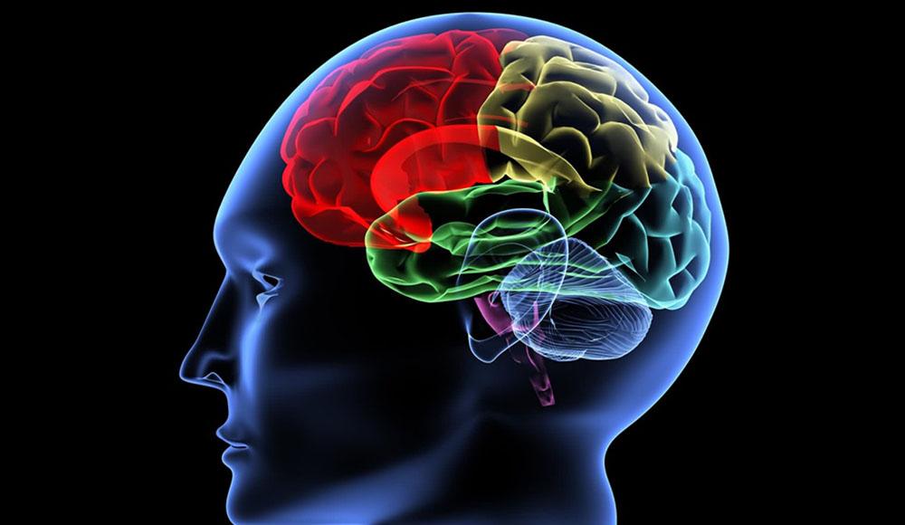 فناوری تصویربرداری از مغز در خدمت آشکار سازی عواطف پنهانی