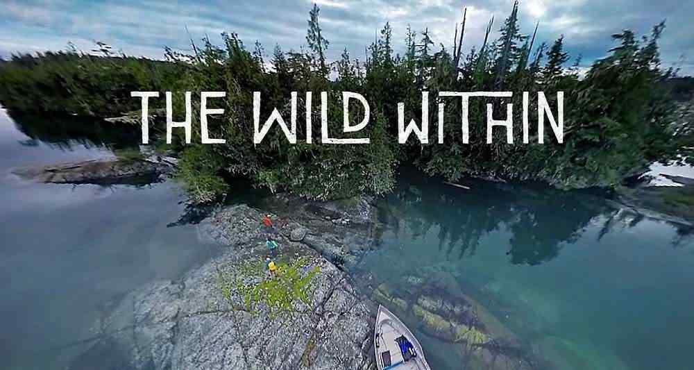 واقعیت مجازی wild within