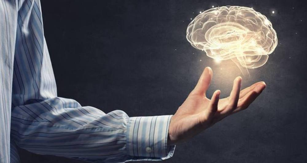 کلمات کجای مغز ما ذخیره می شوند؟