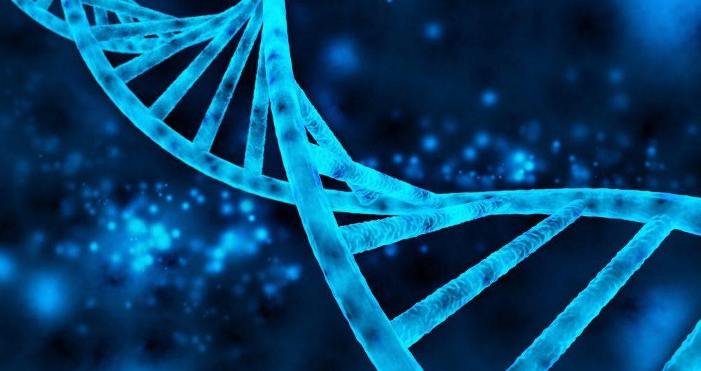 اولین نرم افزار تشخیص و پیشگیری سرطان