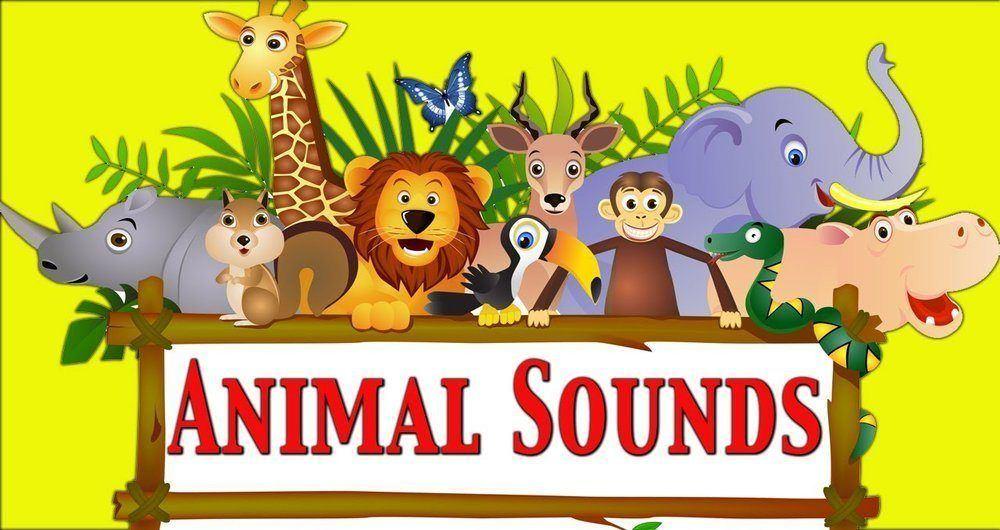 شنیدن صدای حیوانات از طریق گوگل