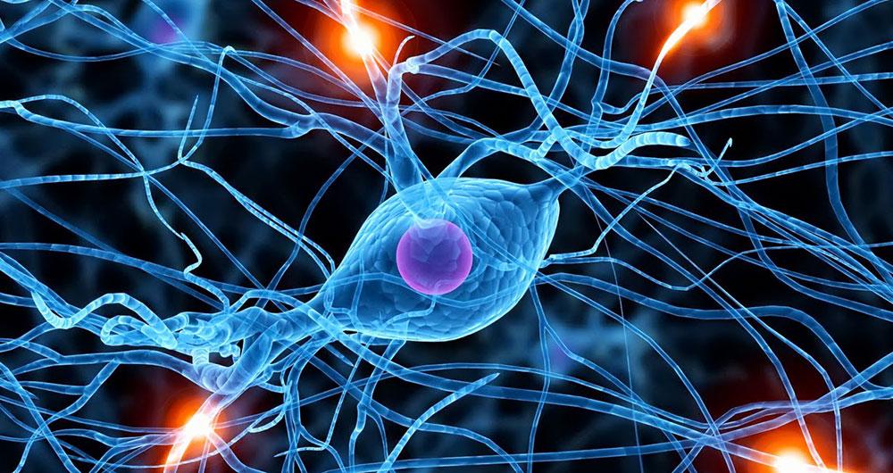 تولید تجهیزات تست و آزمایش علوم اعصاب در داخل کشور