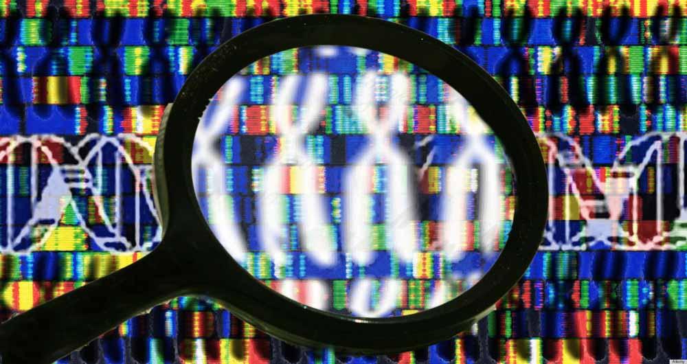 طرح محرمانه سنتز ژنوم انسان به جنجال کشیده شد