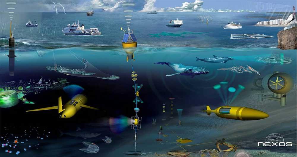 red-sensores-submarina-tarea3