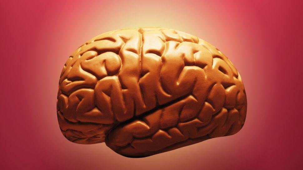 brain-970-80