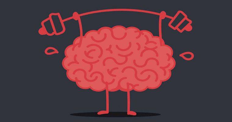 brain-exercise-stud