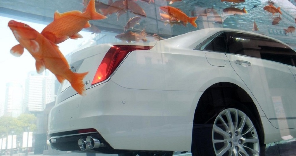 this-cadillac-ct6-is-sleeping-with-the-fishes-in-shanghai_7