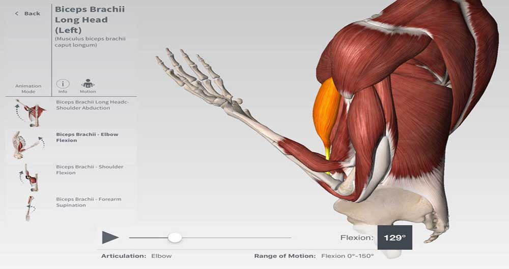 us-ipad-4-complete-anatomy