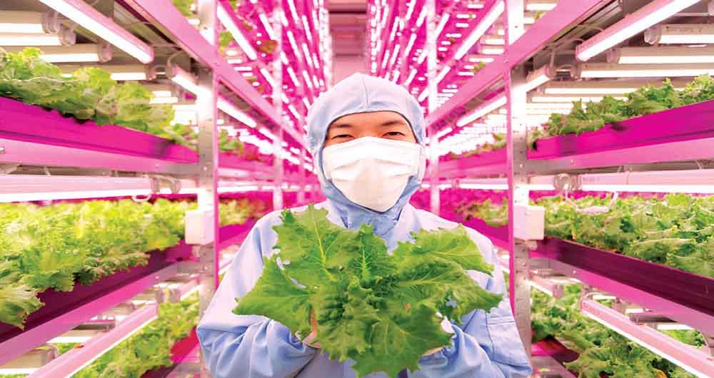شش فناوری که آینده غذا را تغییر می دهد