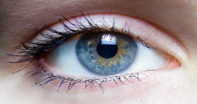 Iris_-_left_eye_of_a_girl (1)