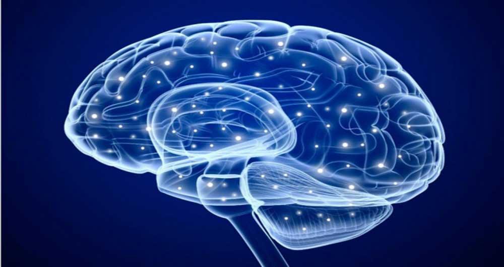 brainimagedarpa1-640x0