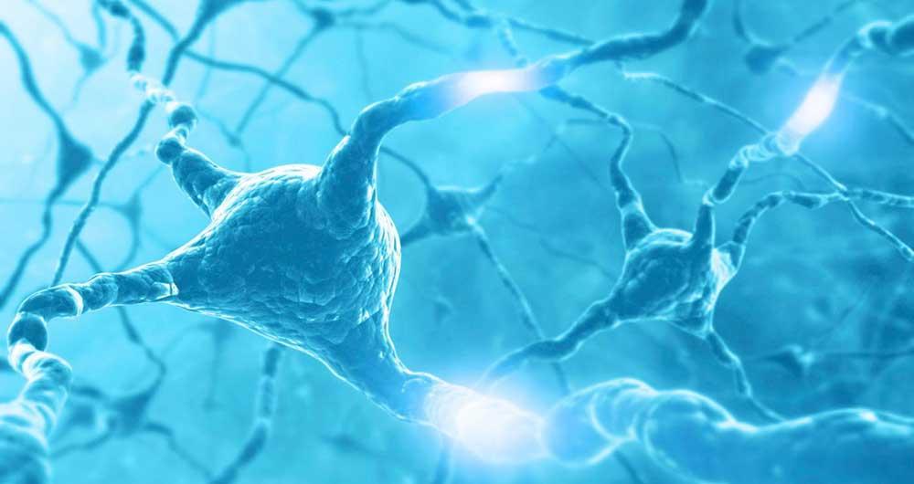 ساخت مدار الکترونیکی جالب با عملکردی شبیه مغز انسان