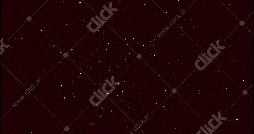 meerkatfirstlight100-970x546-c