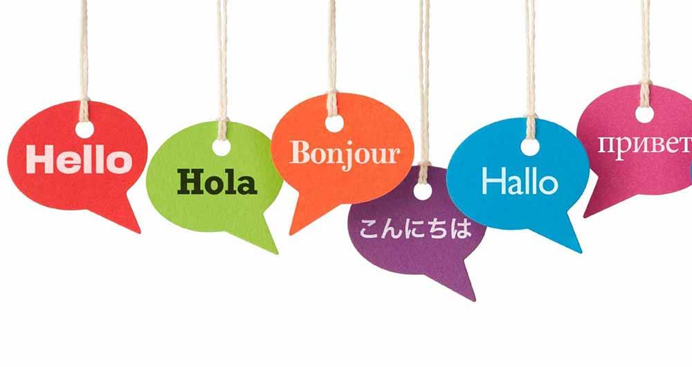 translate295413