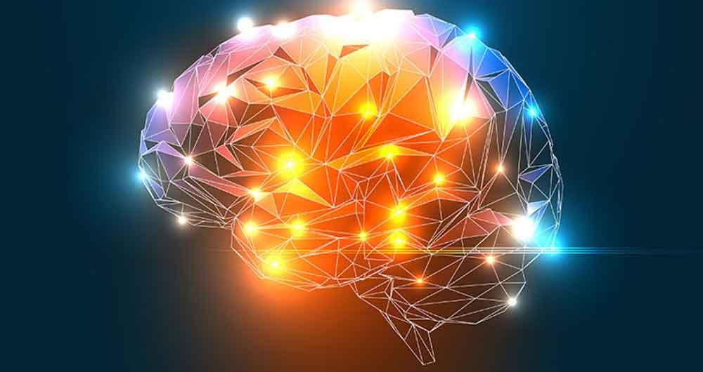 پیشبینی الگوهای فعالیتی مغزی ممکن شد