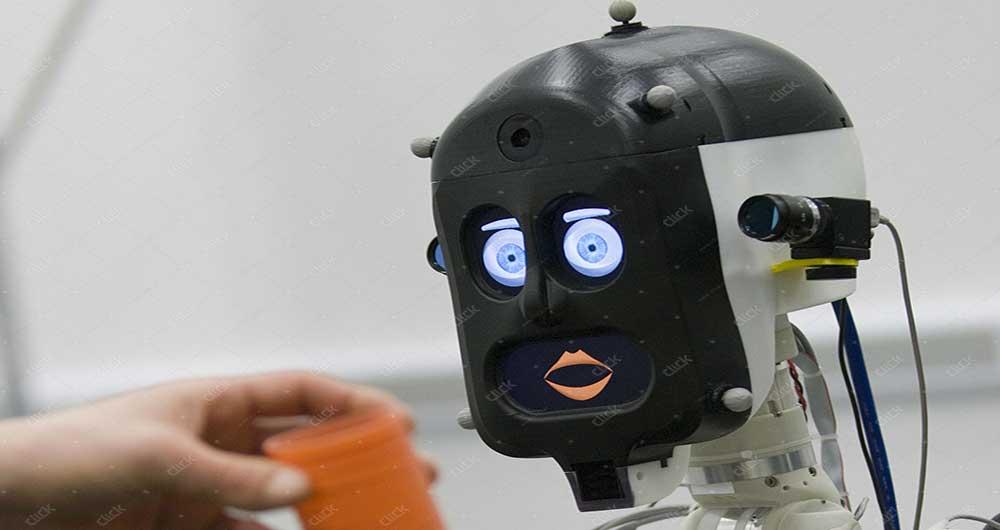 bert-robot-2584x1723