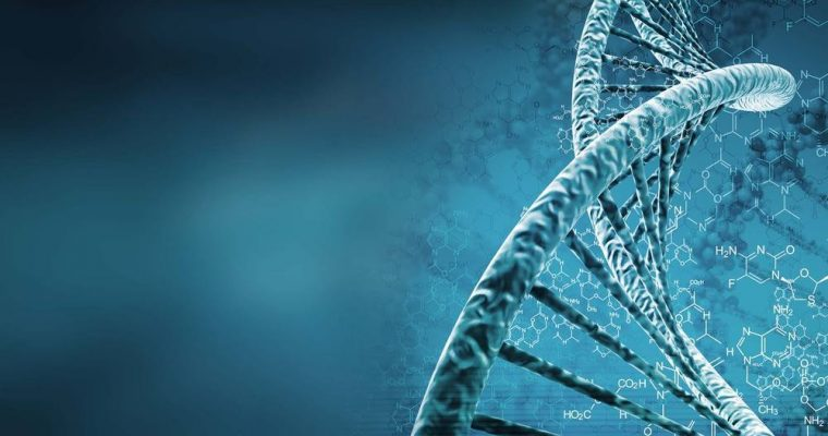کامپیوترهای DNA