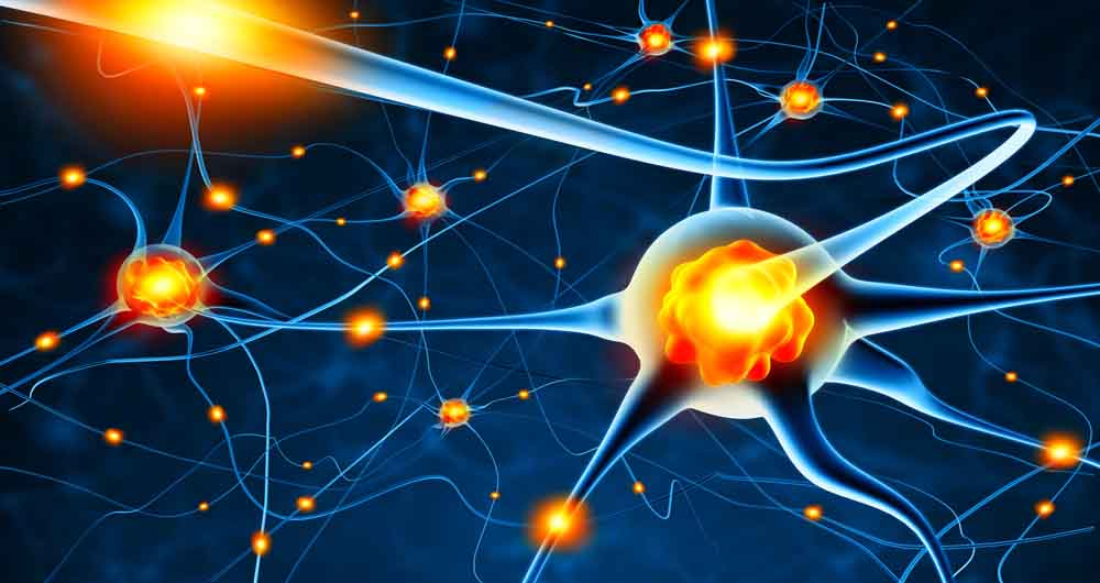 درمان ارادی درد از طریق رمزگشایی نورون ها