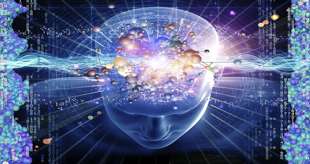 اکتشاف جدید درباره مغز
