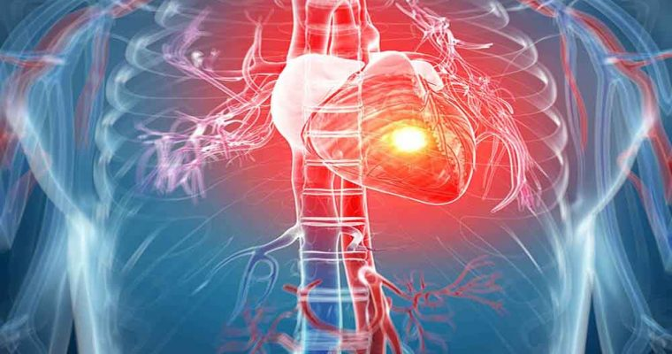 استفاده از سلول های پوستی در درمان قلب