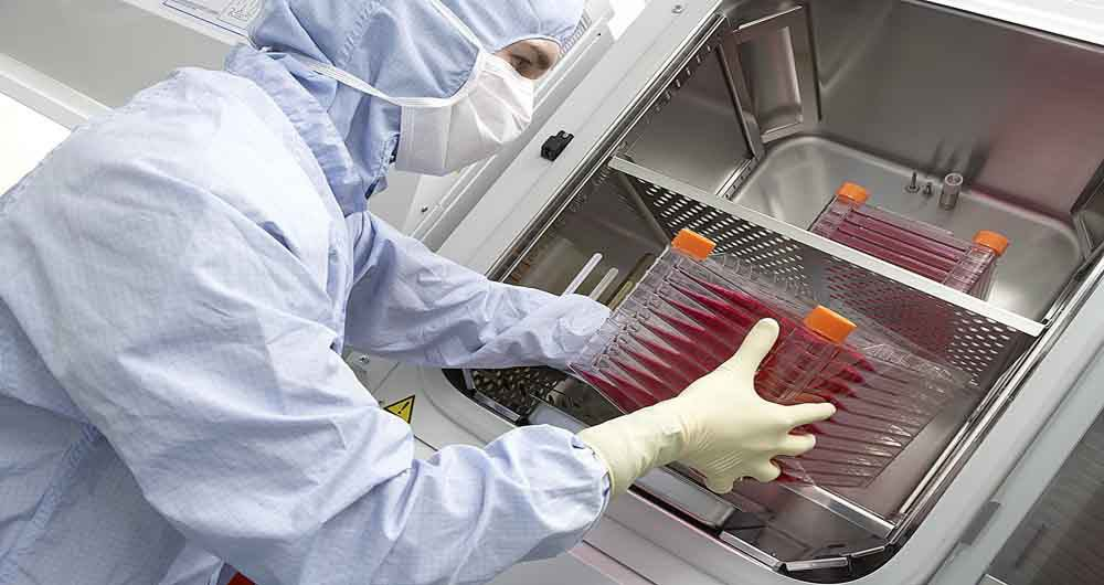 حرکت بحث برانگیز و غیراخلاقی دانشمندان در آزمایش سلول های بنیادی