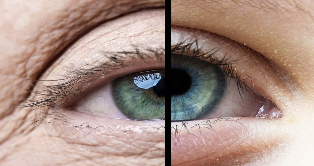 old eye and young eye