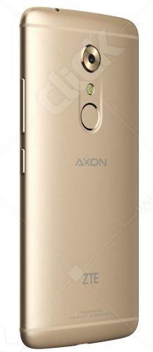 axon_04