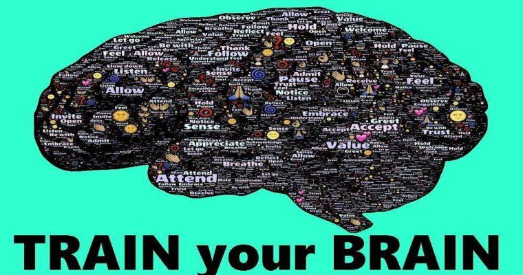 مغز خود را برای موفق شدن پرورش دهید