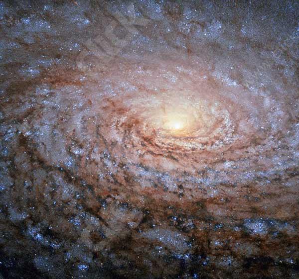 کهکشان آفتابگردان