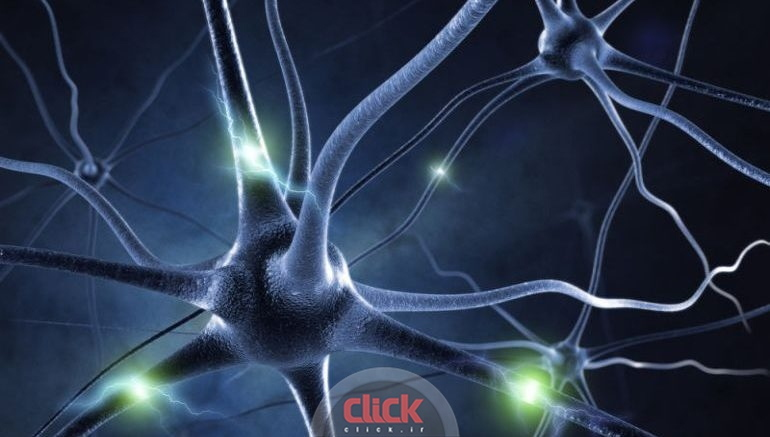 artificially-reactivating-brain-cells-could-help-recover-lost-memories-2-770x437_new