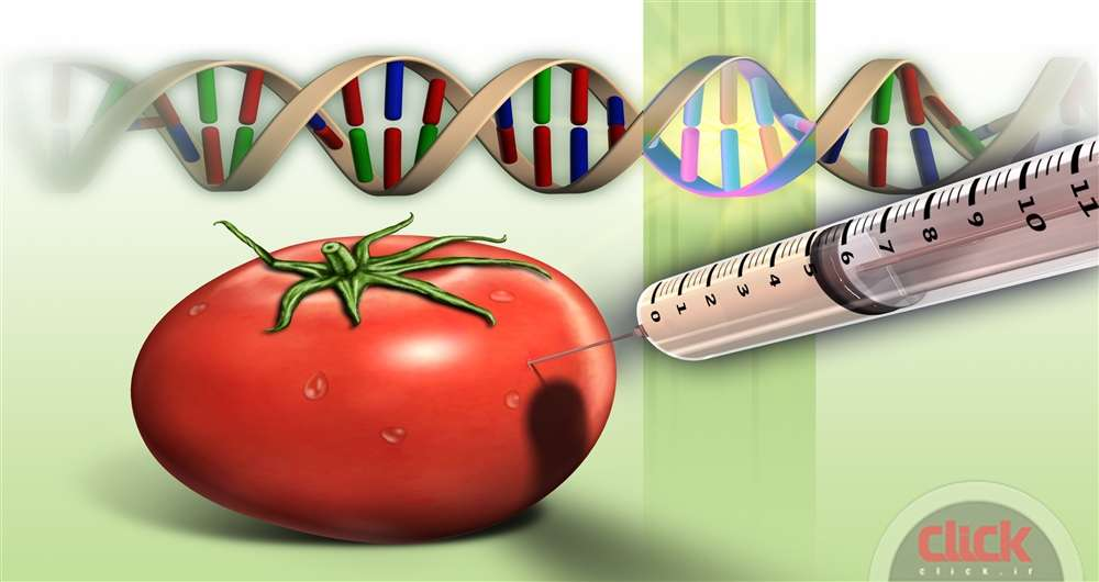 genetically-designed-food_new