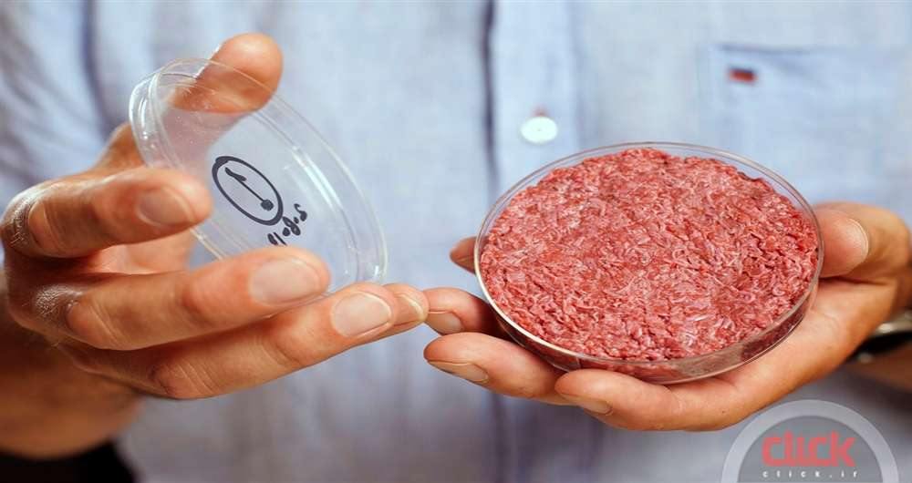 in-vitro-meat_new
