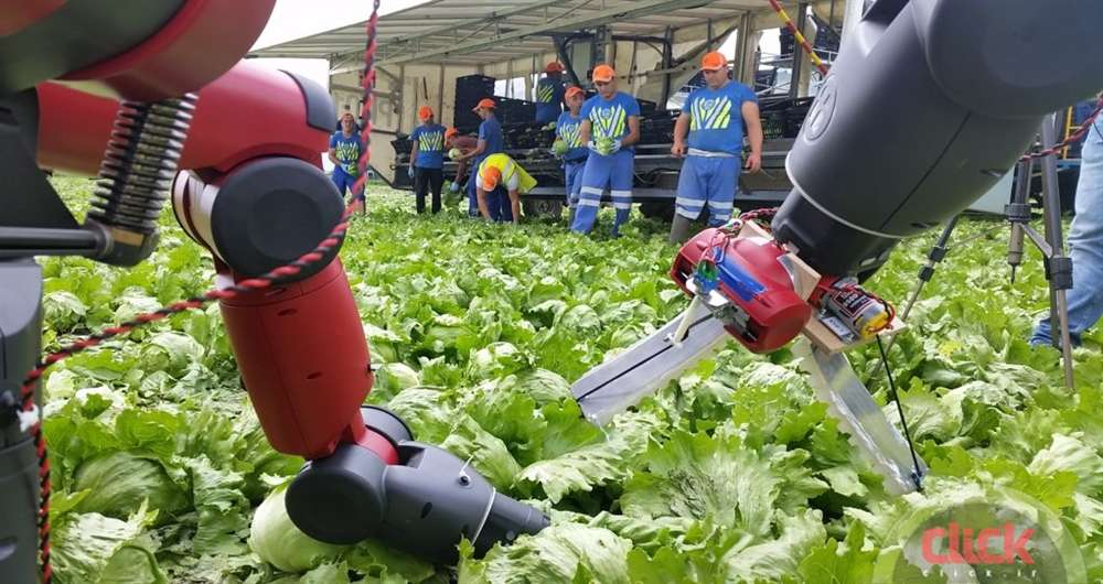 agricultural-robots-field1-1024x576_new