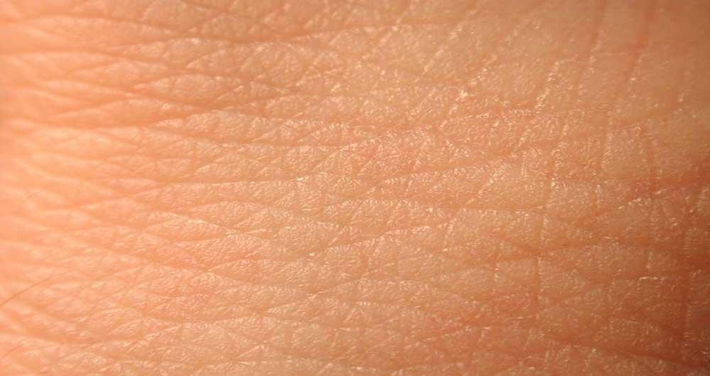 پوست انسان