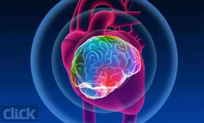 شناسایی مغز برای قلب