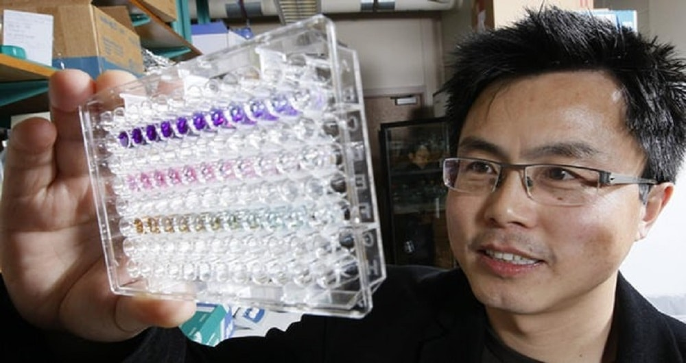 Protein discovery points to potential blood test for all cancers