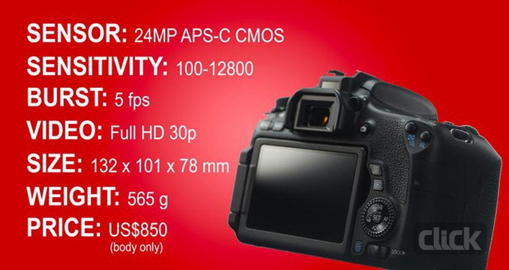 بهترین دوربینهای DSLR برای تازهکارها